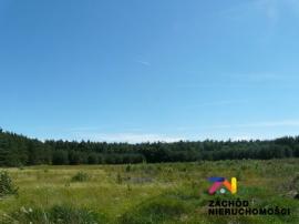 Działka, 47 000 m2, Moczydło gmina Barlinek