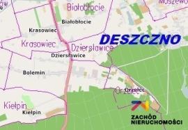 Nieruchomości Gorzów - Działka inwestycyjna w pobliżu trasy Poznań-Kostrzyn-Berlin i autostrady A2. Gmina Deszczno, Okazja!