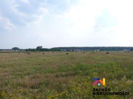 Ogródek działkowy na ul.Kasprzaka!